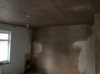 Downstairs Plastering 1