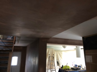 Downstairs Plastering 2